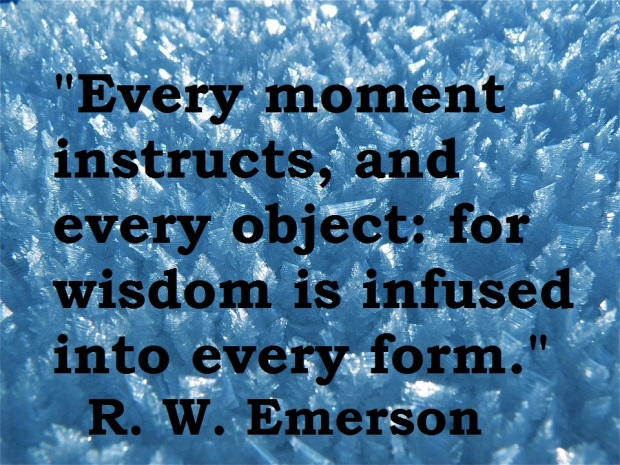 wisdom infused